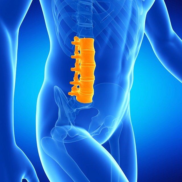Поясничный отдел позвоночника занимает второе место при столкновении с остеофитом