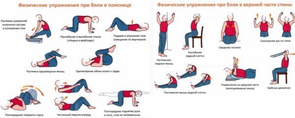Упражнения при боли в пояснице и в верхней части спины