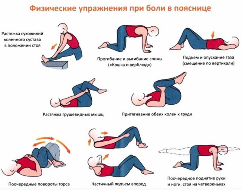 Гимнастика для позвоночника при боли в пояснице