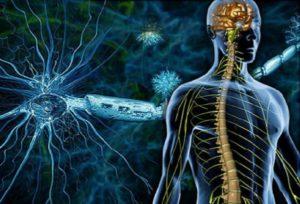Нейроаллергический