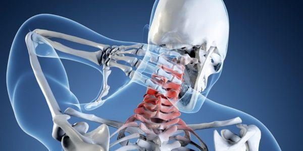 Часто проблемы с позвоночником связаны с малой физической активностью