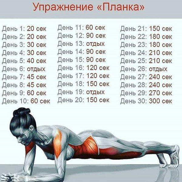 Курс упражнения на месяц