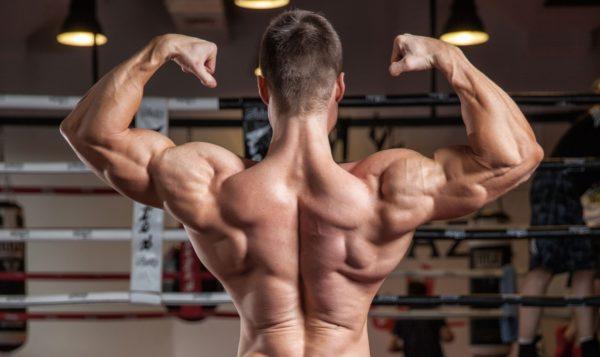 Тренированная спина выглядит красиво