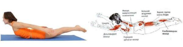 Упражнение «Лодочка» для спины