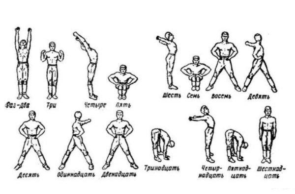 Утренняя гимнастика активизирует обмен веществ, улучшает сердечную деятельность, укрепляет и формирует мышцы, помогает правильно держать осанку