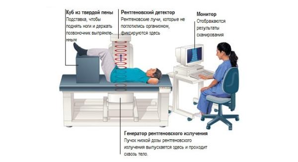 Пациент располагается между датчиком и излучателем