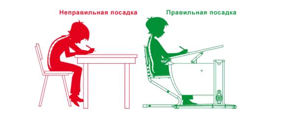 Для сохранения осанки необходимо правильно сидеть во время уроков и выполнения домашних заданий