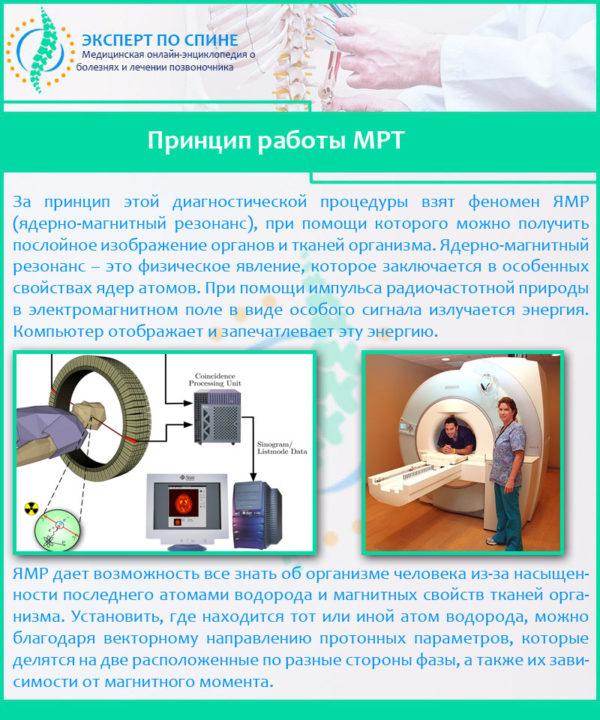 Принцип работы МРТ