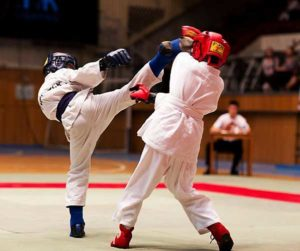 Различные виды борьбы (тхэквондо, бокс,рукопашный бой, каратэ)