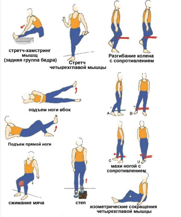 Гимнастические упражнения для поддержания мышц при миозите