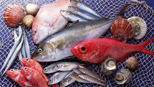 Рыба - источник ценных липидов