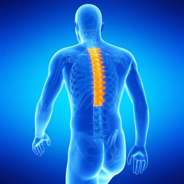 Гомеопатия при остеохондрозе грудного отдела