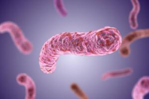Микобактериальная