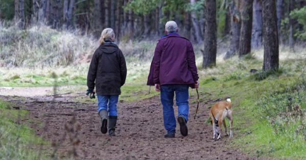 Пешие прогулки после операции пойдут на пользу