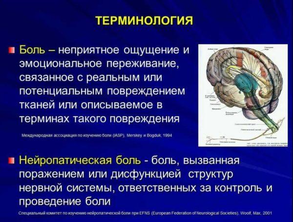 Боль и нейропатическая боль