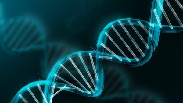 Генетические мутации - одна из возможных причин