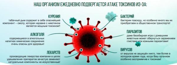 Выведение токсинов, воздействию которых человеческий организм подвергается ежедневно, способствует нормализации обменных процессов и ускоряет выздоровление