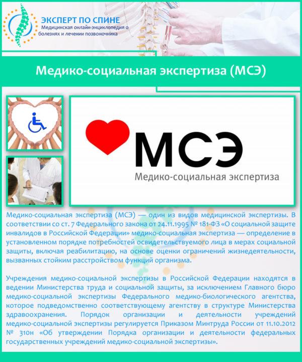 Медико-социальная экспертиза