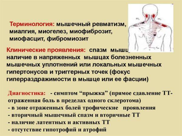 Миогелез