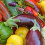 Пасленовые (баклажаны, помидоры, перец и т.п.)