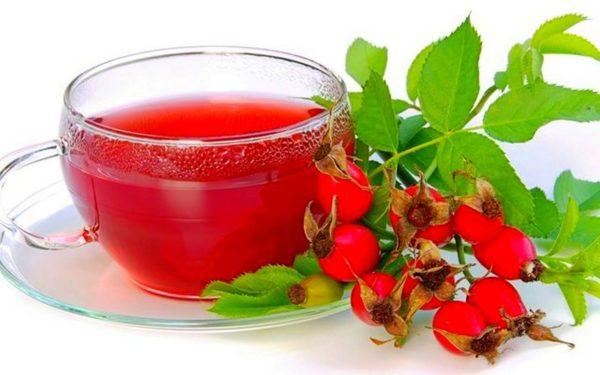 При миозите очень полезен отвар из плодов шиповника