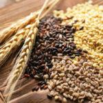 Пшеница и другие злаки