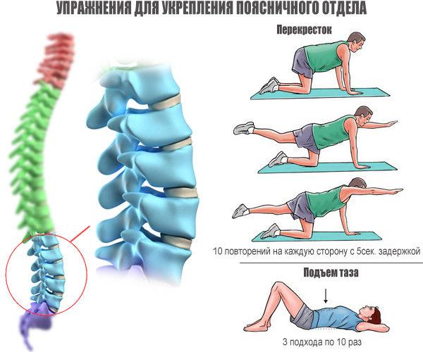 Упражнения для укрепления поясничного отдела