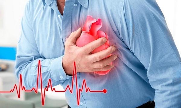 Сердце – орган, который непосредственно влияет на состояние всего организма человека