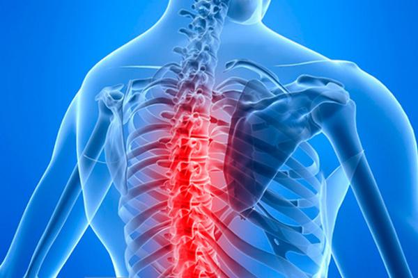 Жировая дегенерация позвонков в груди и шее отличаются причинами развития