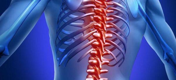 Многие считают, что хондроз и остеохондроз – одно и то же заболевание, однако это не так