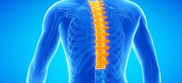 В грудном отделе остеохондроз встречается реже, чем в шейном и поясничном