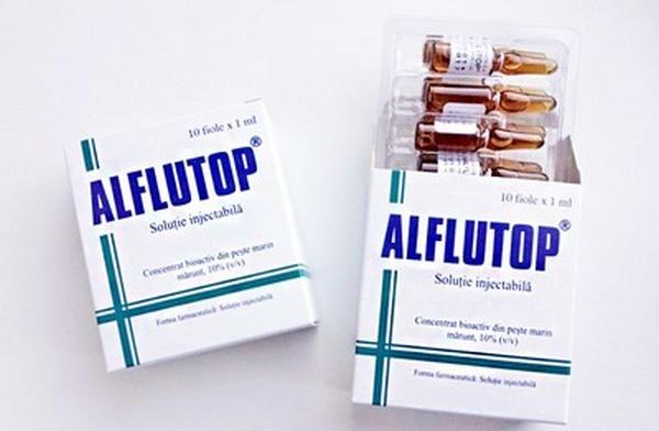 «Алфлутоп» - популярный хондропротектор, который содержит в составе лишь натуральные компоненты