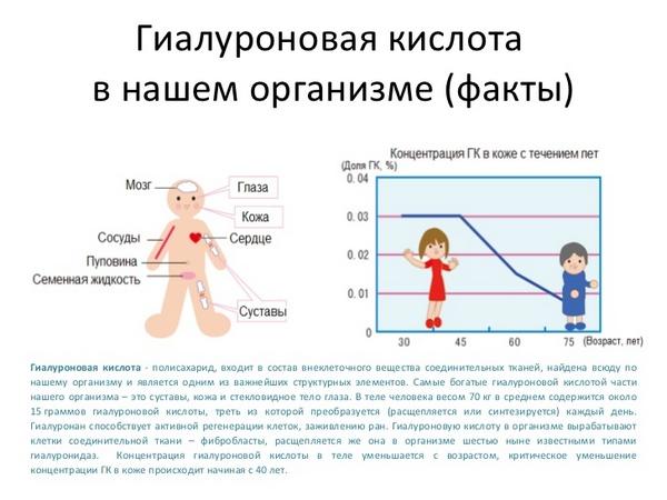 Гиалуроновая кислота необходима организму для правильной его работы