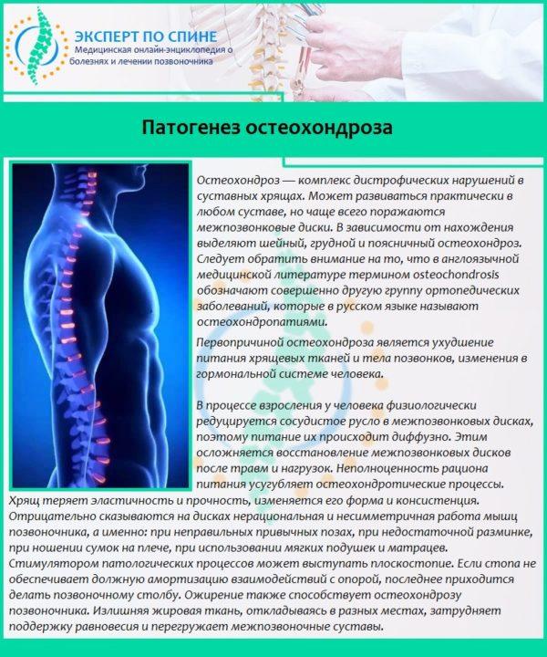 Патогенез остеохондроза
