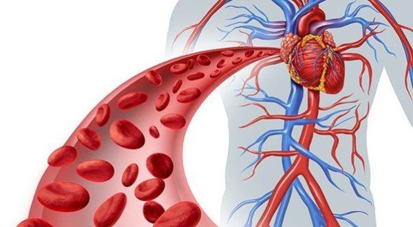 Препарат восстанавливает нормальную сократимость миокарда
