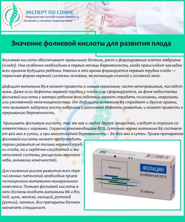 Значение фолиевой кислоты для развития плода