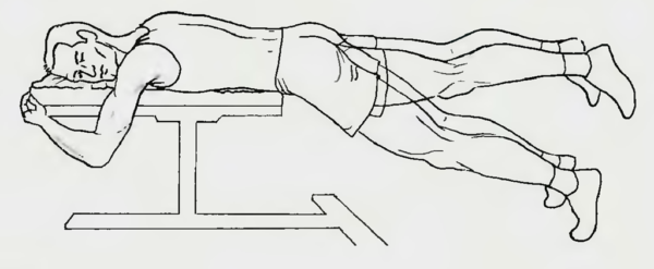 Поднимание прямых ног назад лежа животом на скамье