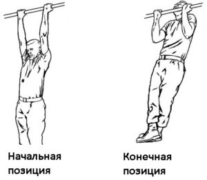 Подтягивание тела без отягощений