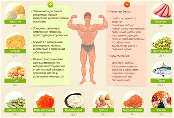 Признаки переизбытка и нехватки белка