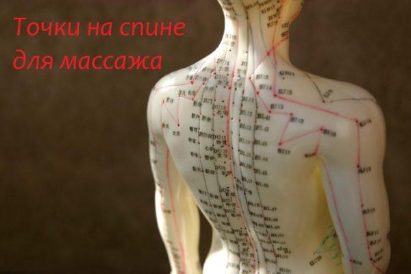 Точки на спине для массажа