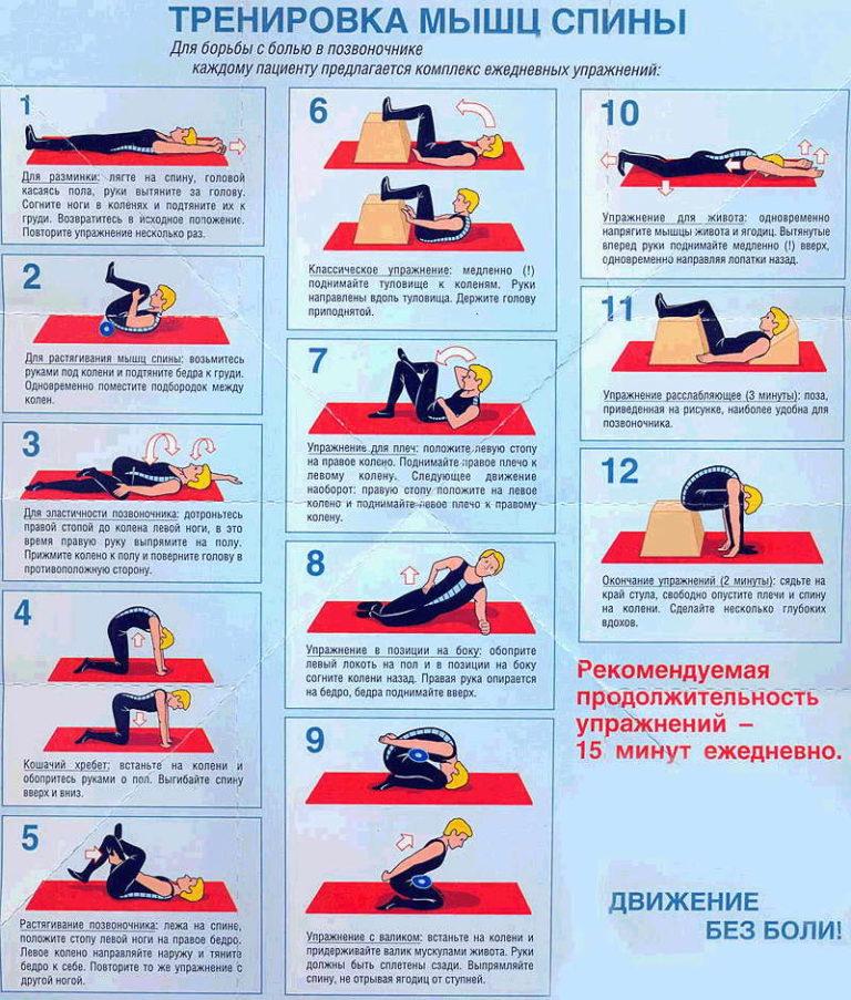 Упражнения для мышц позвоночника с картинками