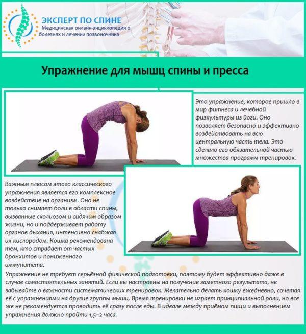 Упражнение для мышц спины и пресса