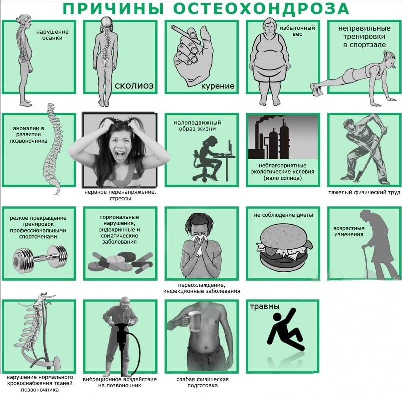 Факторов, способствующих развитию остеохондроза, существует немало