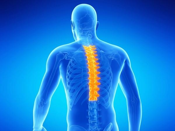 Спондилоартроз – опасное для полноценной жизни заболевание позвоночника