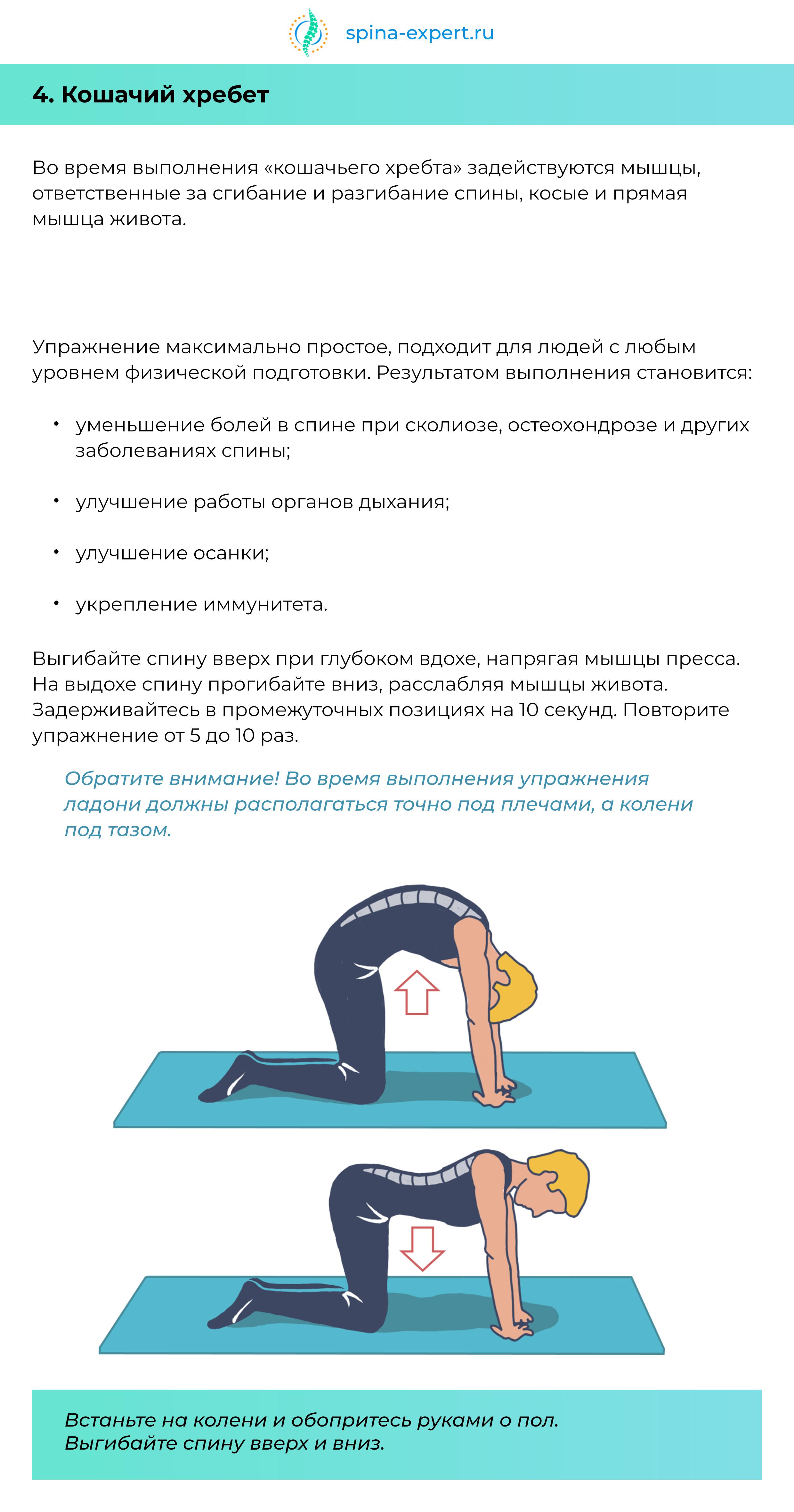 """alt=""""«10 упражнений для спины»"""""""