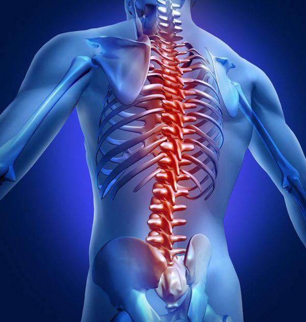 Провоцирующими факторами заболеваний являются невылеченные травмы, возрастные изменения и избыточный вес