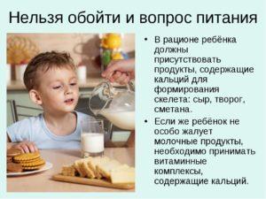 Нельзя обойти и вопрос питания