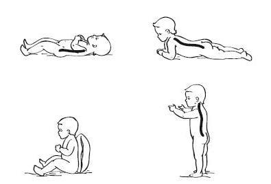 У детей корректировку плоской спины следует проводить до 12 лет